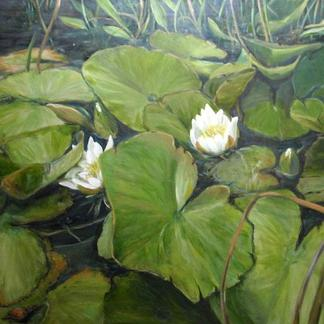 Water Lillies (Acrylic)